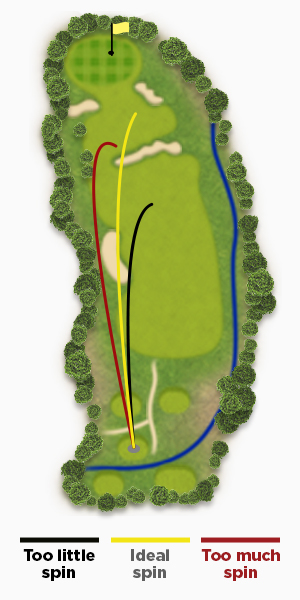 Finding the perfect driver spin